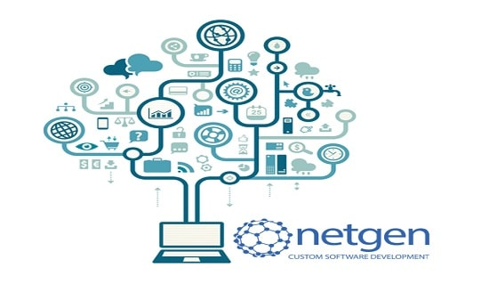 custom-software-netgen-1.0