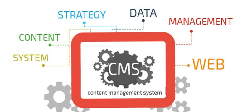 content management systems for your website