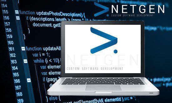 Netgen custom software