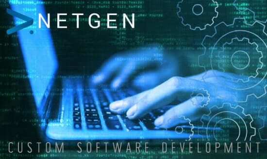 Netgen Customised Application Software Solutions