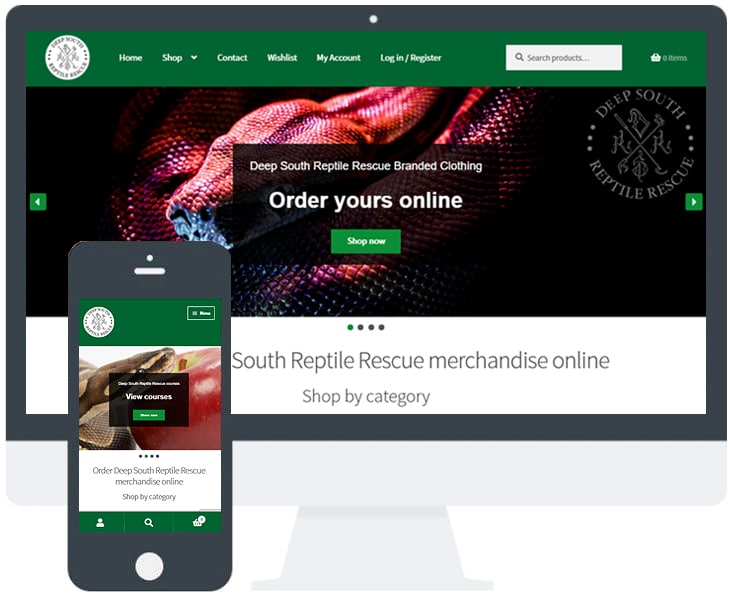 eCommerce website example screenshot